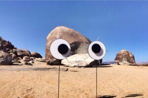 Google Eyes on Giant Rock